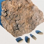 Raw Humate Ore & Tablets